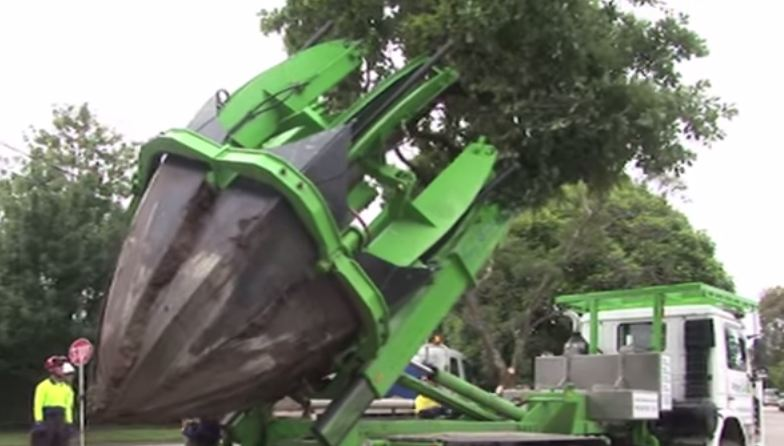 Tree Relocation – Nature Lovers