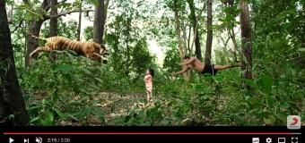 Vanamagan – Official Tamil Trailer   Jayam Ravi, Sayyeshaa   Harris Jayaraj   Vijay